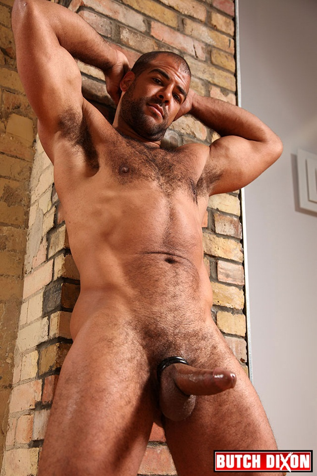 Don recommend best of twink british