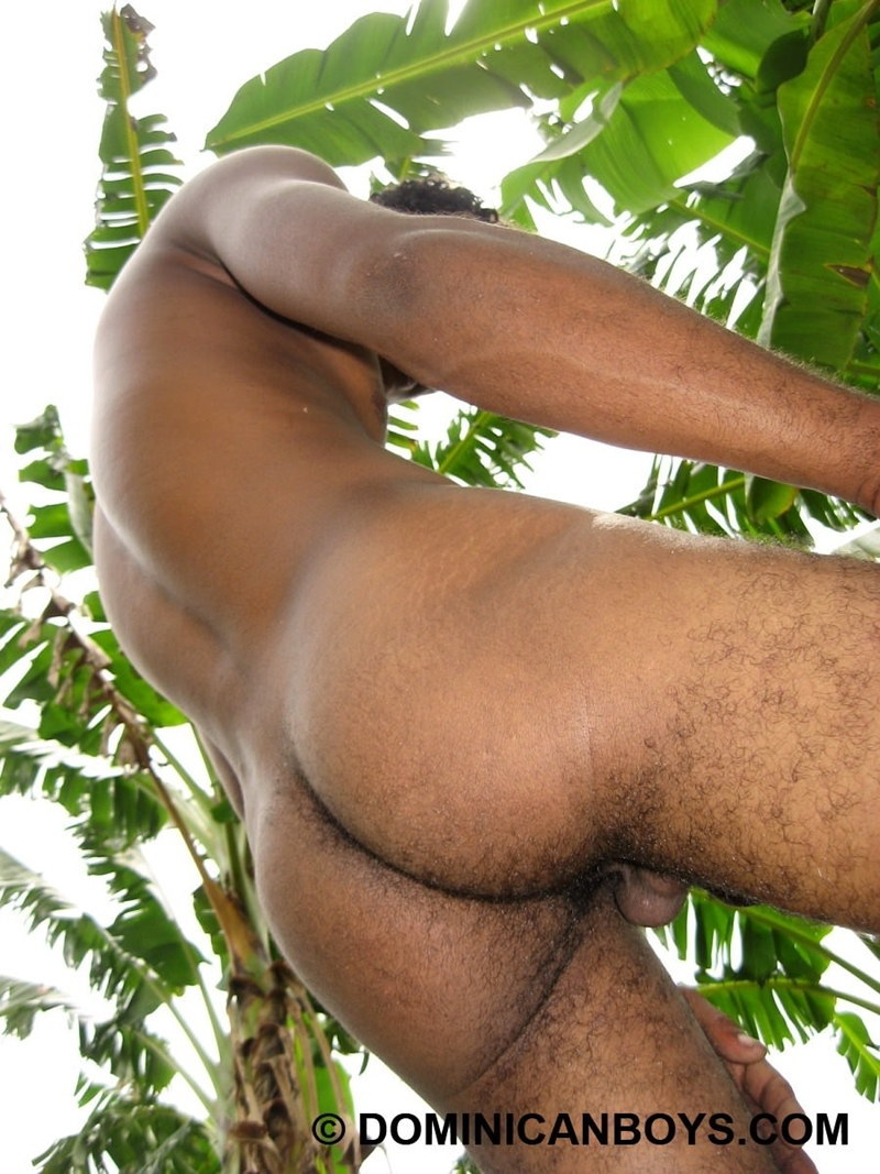 DominicanBoys-Juan-sexy-light-chocolate-brown-twink-body-hair-masculine-21-year-old-massive-9-nine-inch-cock-008-tube-download-torrent-gallery-photo